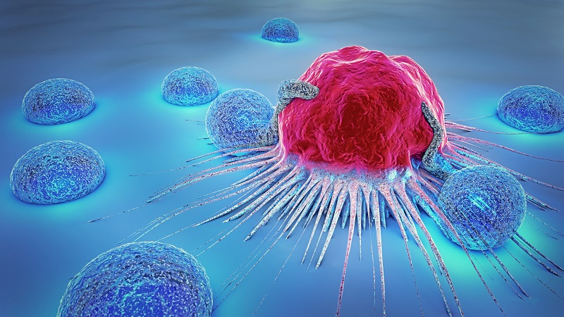07AUG20 cancer cell metastisis