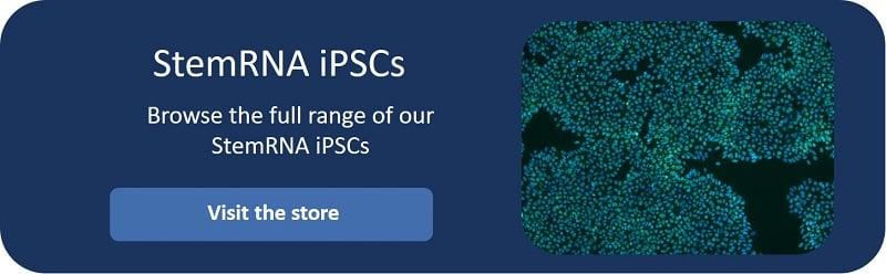Click-here-StemRNA-iPSC-CTA2