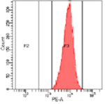 Figure 4 a - Flow cytometry T cells