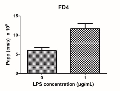 Introducing immune cells into alvetex intestinal epithelium model increases paracellular permeability