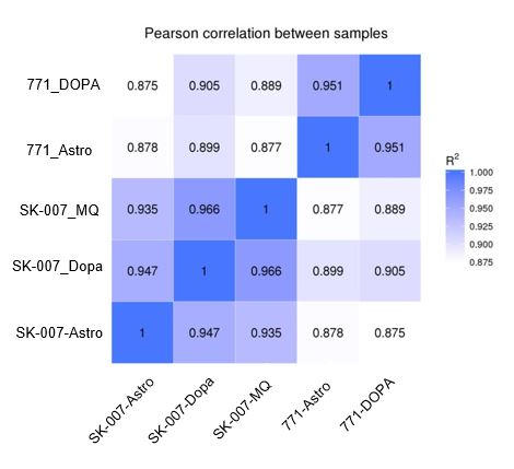Person correlations between samples for RNA seq data