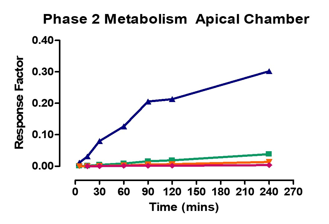 Phase 2 Metabolism Apical Ussing Chamber