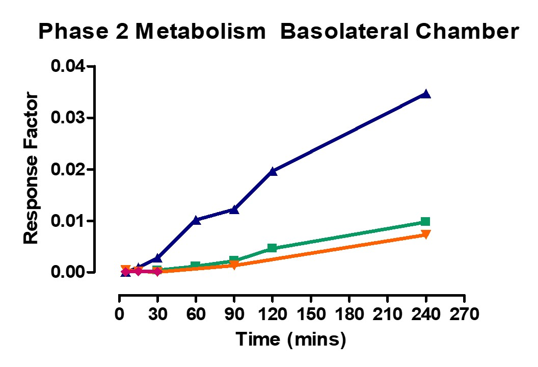 Phase 2 Metabolism Basolateral Ussing Chamber
