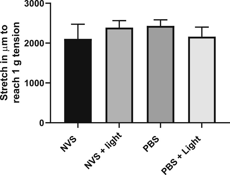 Stretch required to reach 1 g tension in isolated human popliteal artery rings pre-treated with NVS, NVS light, PBS, or PBS light. All groups showed similar stretch properties