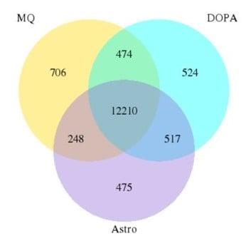 Ven Diagram RNA seq analysis PD model