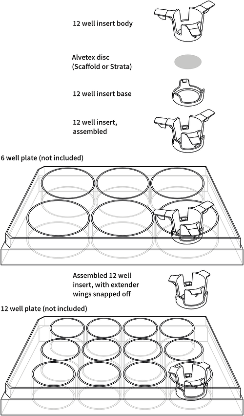 alvetex-12-well-insert-drawing
