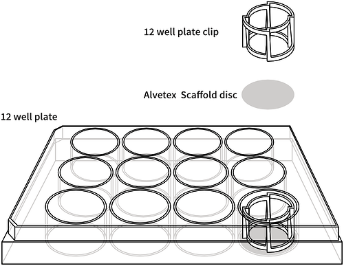 alvetex-12-well-plate-drawing