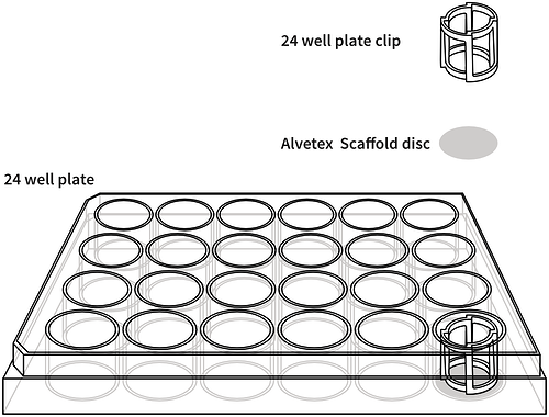 alvetex-24-well-plate-drawing