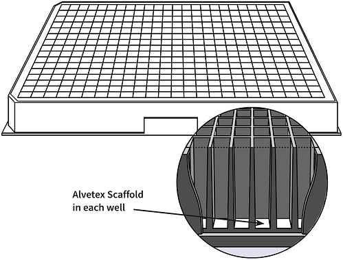 alvetex-384-well-plate-drawing-2