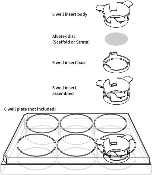 alvetex-6-well-insert-drawing