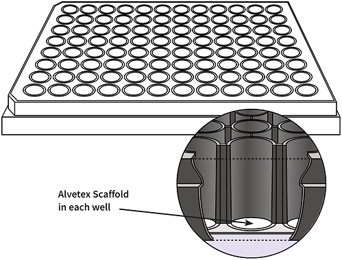 alvetex-96-well-plate-drawing