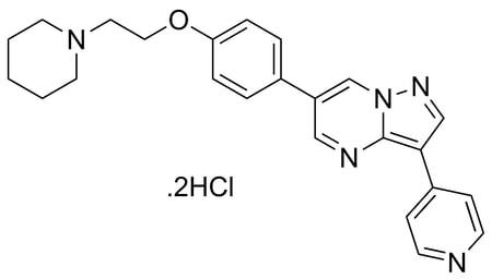 Stemolecule-04-0024