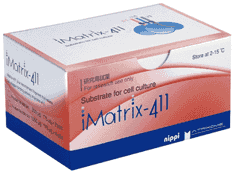 imatrix-411-endothelial-cell-substrate-p339-289_medium