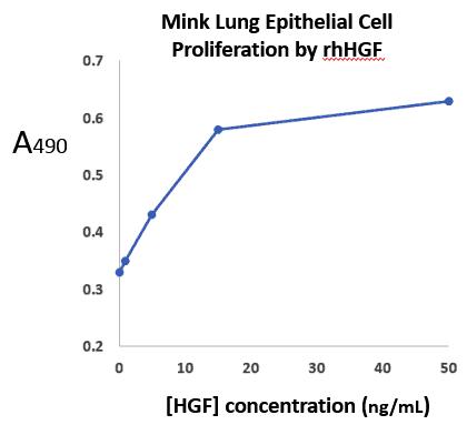 stemfactor-hepatocyte-growth-factor-human-recombinant-p209-169_medium
