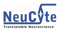 synfire-logo